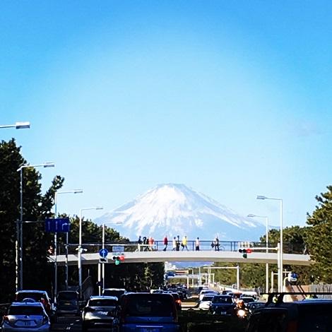 ここからの富士山大きい